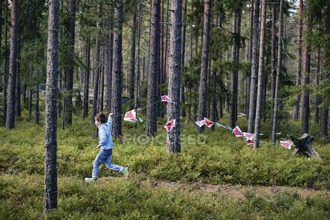 Мальчик проходит через лес, потянув овсянка — стоковое фото