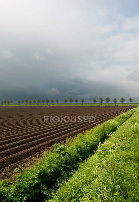 Ploughed fields under cloudy sky — Stock Photo