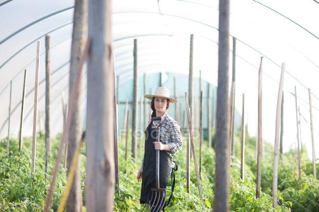 Young woman working in vegetable greenhouse — Stock Photo