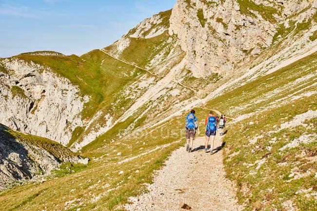 Vista posterior de excursionistas en la ruta de montaña, Austria - foto de stock