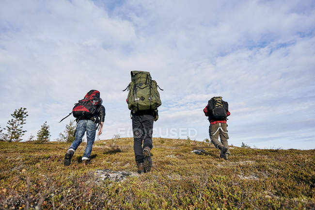 Rear view of three hikers with backpacks walking on hill — Stock Photo