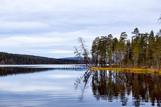 Vista de árvores e lago contra o céu azul — Fotografia de Stock
