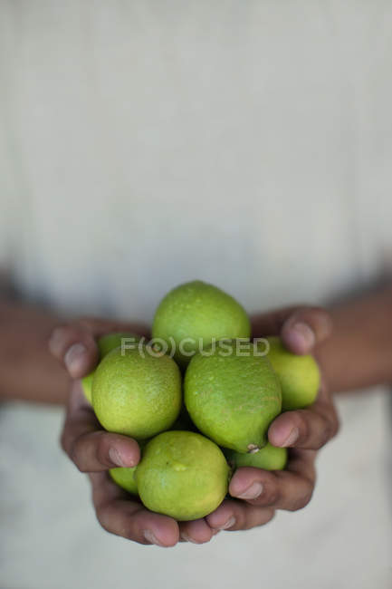 Close-up partial view of person holding fresh limes — Stock Photo