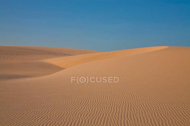 Desert sand dunes — Stock Photo