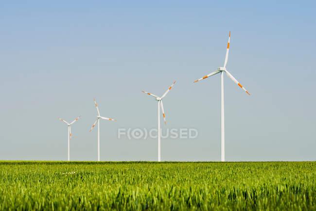 Vue des éoliennes, Selfkant, Allemagne — Photo de stock
