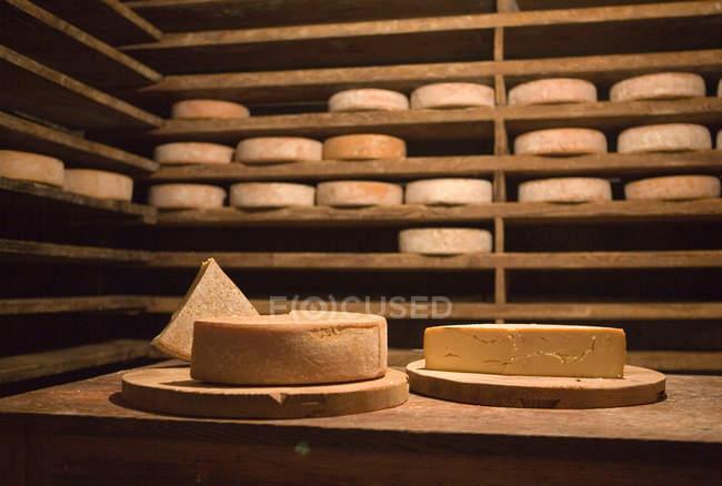 Pilas de ruedas de queso - foto de stock