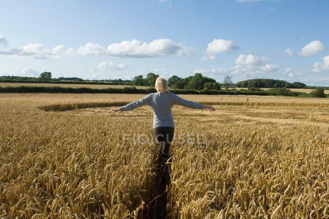 Вид сзади женщины, поднимающей руки в поле — стоковое фото