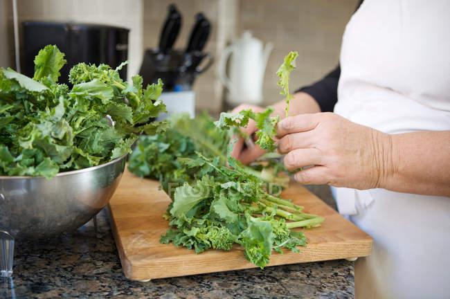Обрезанное изображение женщины, стирающей листья салата — стоковое фото