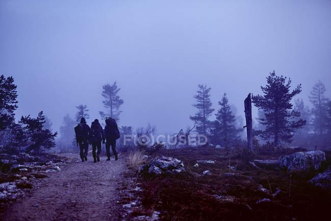 Vista trasera de tres excursionistas con mochilas en camino rural - foto de stock