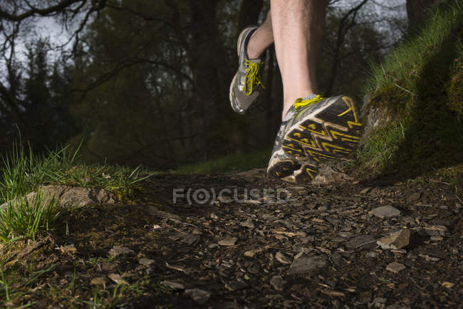 Close up of man wearing trainers running — Stock Photo