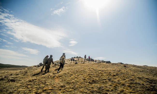 Grupo de seis adultos novos que caminham em montanhas — Fotografia de Stock