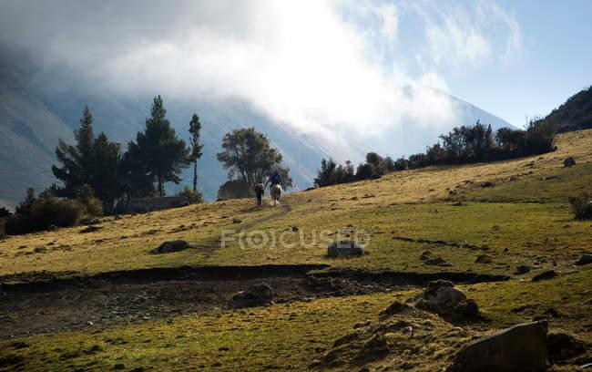 Vista posteriore di persone sulla strada per Cochayoq, Ande, Perù — Foto stock
