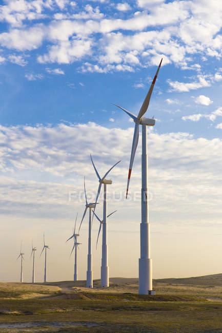 Éoliennes sur champ bleu ciel nuageux — Photo de stock