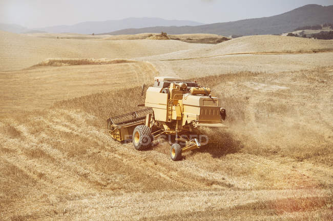 Combine harvester harvesting wheat field, Siena,Tuscany, Italy — Stock Photo