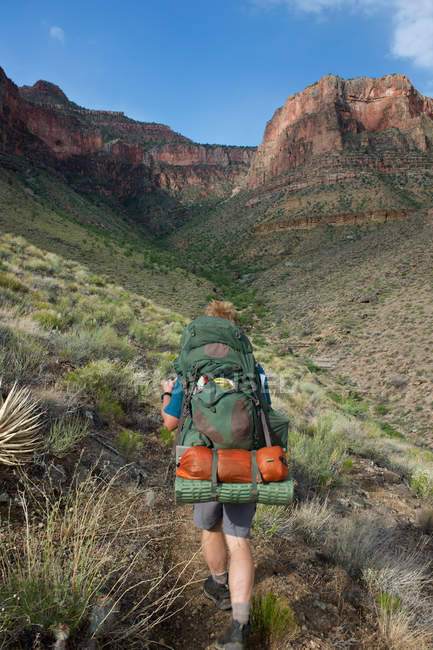 Vista posteriore di Man hiking in New Hance, Grandview Hike, Grand Canyon, Arizona, Stati Uniti d'America — Foto stock