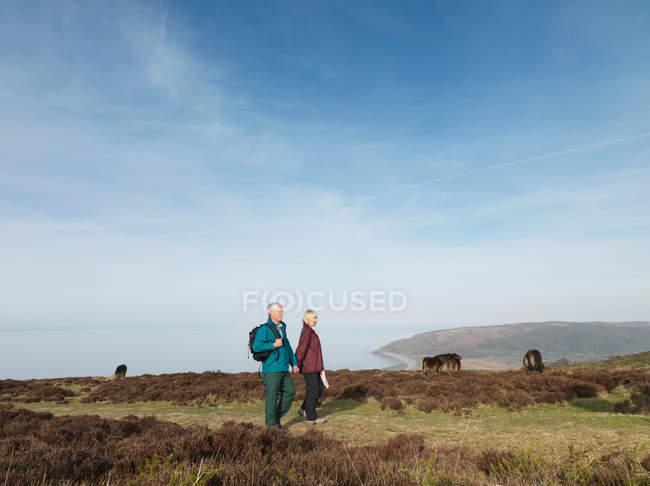 Älteres Paar geht im Moor spazieren — Stockfoto