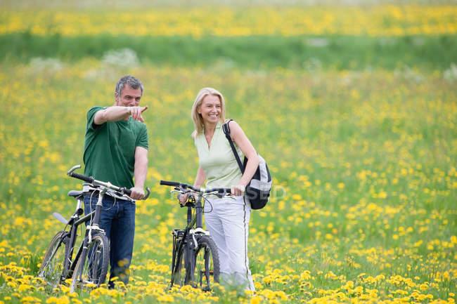 Пара велосипедов в поле — стоковое фото