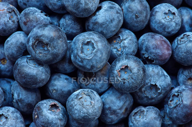 Bunch of ripe blueberries — Stock Photo