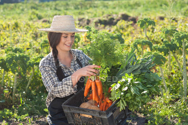 Young woman with vegetables grown at farm — Stock Photo