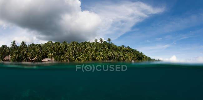 Palme sull'isola tropicale — Foto stock