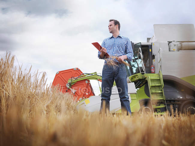 Фермер перевірки врожаю на фермі — стокове фото