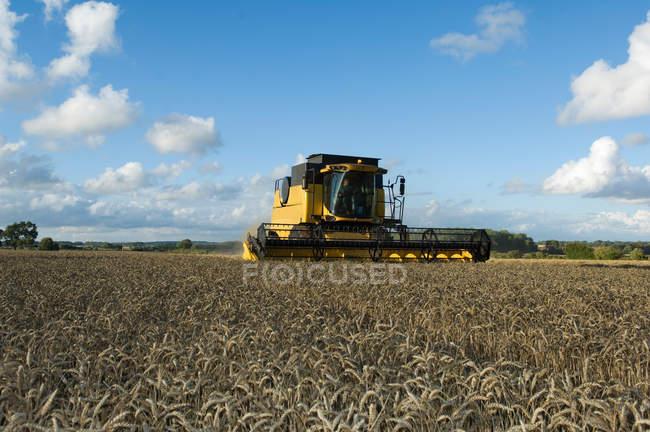 Combiner la moissonneuse dans le champ de blé — Photo de stock