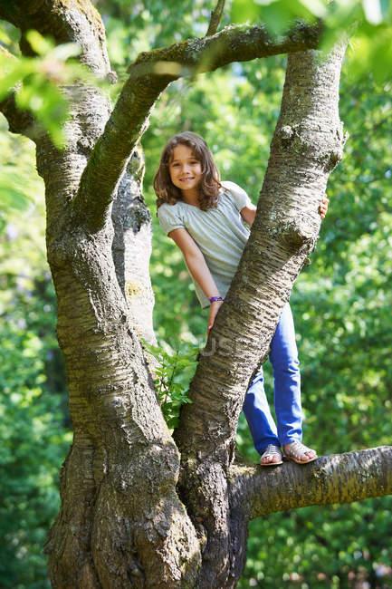 Sorrindo menina escalando árvore ao ar livre — Fotografia de Stock