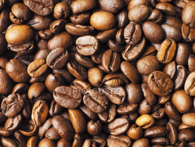 Крупним планом постріл кави в зернах палі — стокове фото
