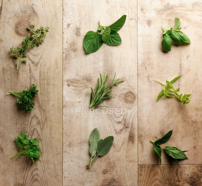 Selection of fresh green herbs on rustic wooden surface — Stock Photo