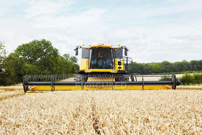 Raccolti che lavorano nel campo delle colture — Foto stock