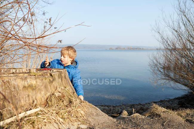 Мальчик играет с ягодами у озера — стоковое фото