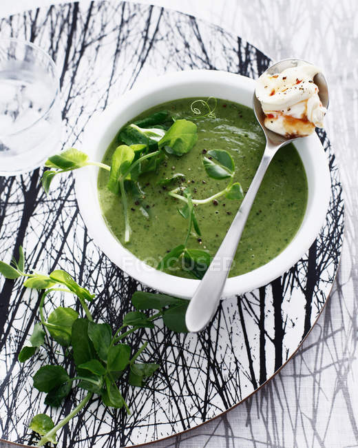 Bowl of pea soup — Stock Photo