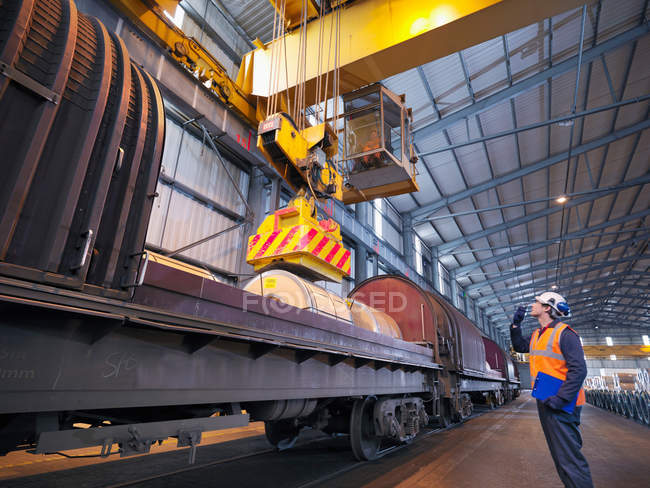 Port Worker Loading Cargo On To Train — Stock Photo
