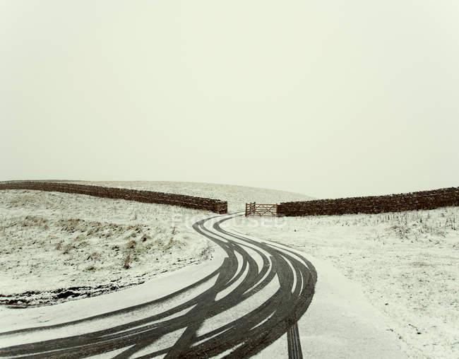 Marcas de pneu na estrada rural Nevada com cercas e portão — Fotografia de Stock