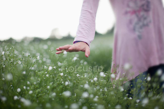 Cropped image of child walking in field and touching flowers — Stock Photo
