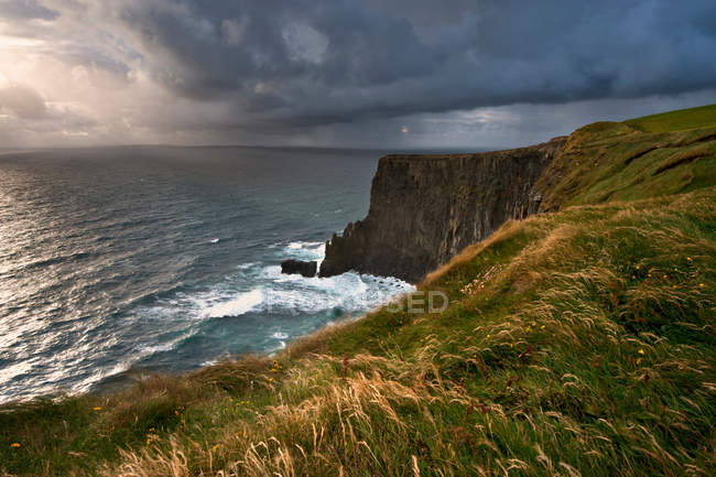 Tall grass growing on coastal cliffs — Stock Photo