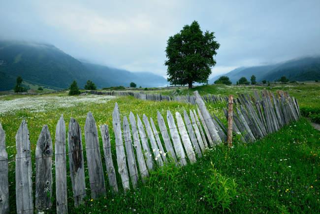 Паркан на зелену долину Туманний з далеких гір — стокове фото
