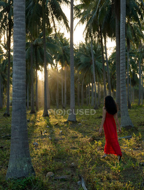 Woman wearing red dress walking in forest of palm trees — Stock Photo