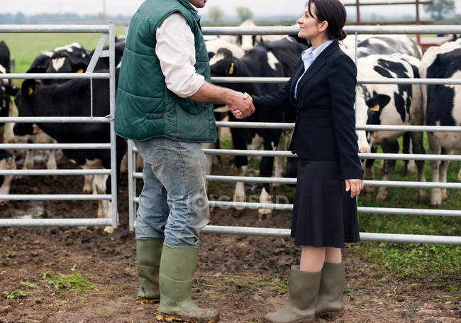 Business woman shaking hands with farmer — Stock Photo