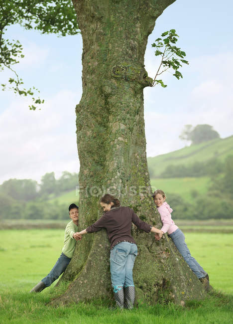 Children Hugging Tree at farm — Stock Photo