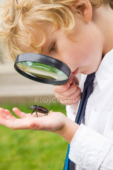Boy examining bug with magnifying glass — Stock Photo
