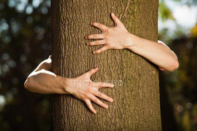 Adolescente menino abraçando árvore no parque — Fotografia de Stock