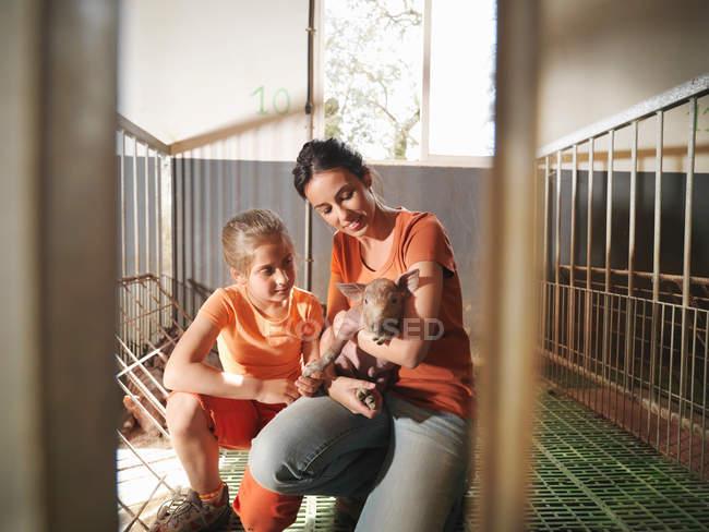 Женщина и ребенок в ручке держат поросенка — стоковое фото