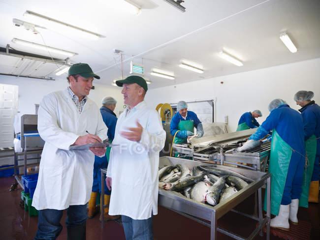 Менеджер и персонал обсуждают производственную линию выращиваемой вручную шотландской фермы лосося — стоковое фото
