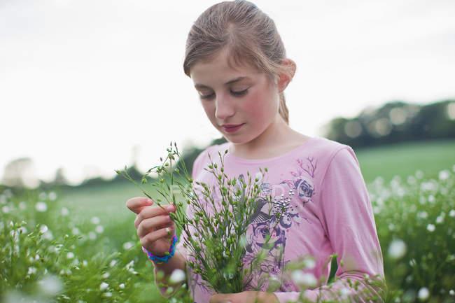 Дівчина збір квіти у сфері — стокове фото