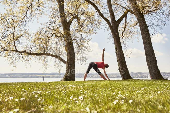 Vista trasera de la mujer, en posición de yoga junto al lago - foto de stock