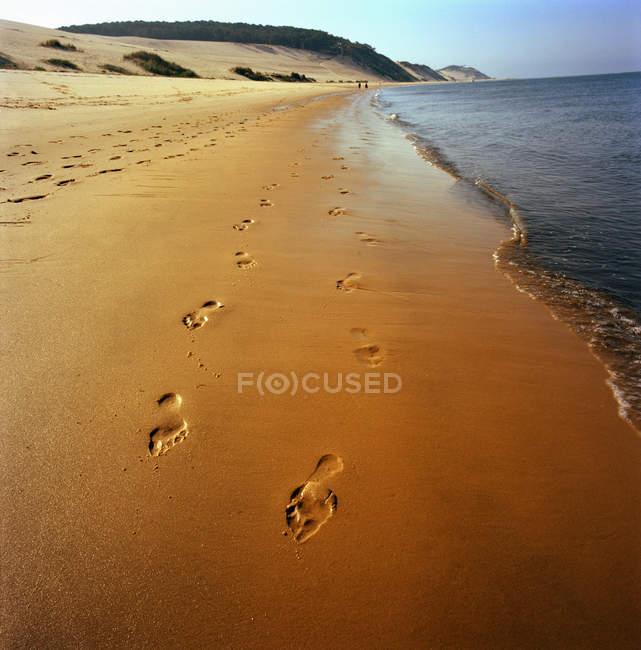 Следы в песок на beach — стоковое фото