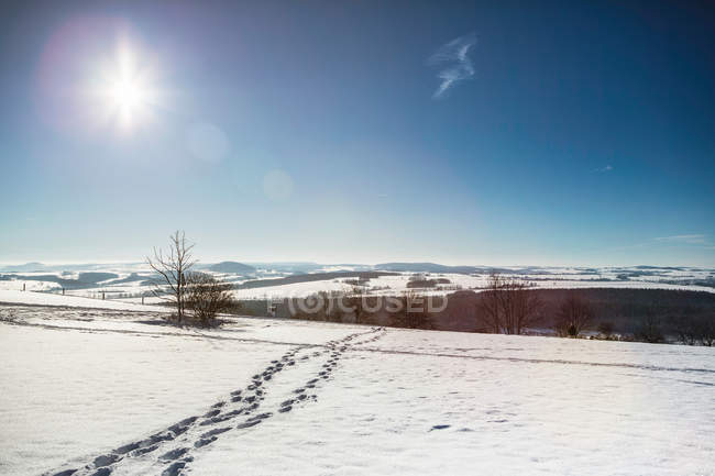 Следы в снежный пейзаж — стоковое фото