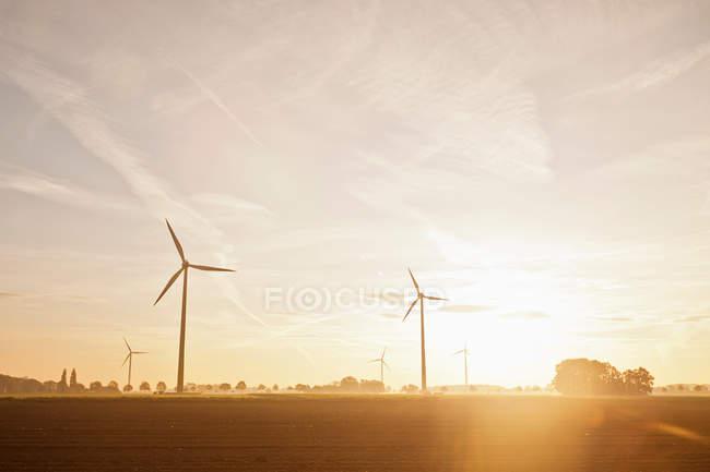 Wind turbines in rural landscape — Stock Photo
