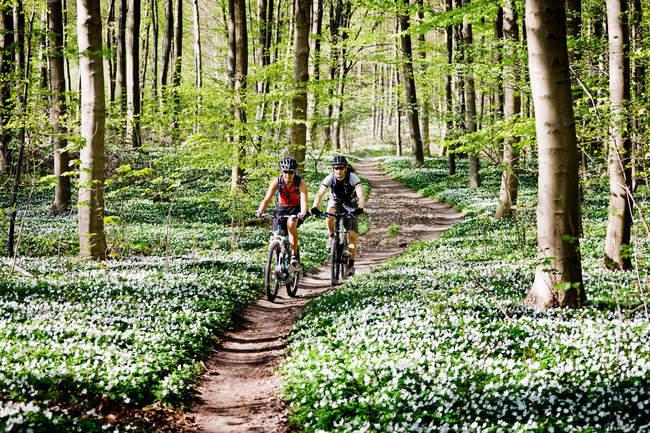 Paar beim gemeinsamen Mountainbiken — Stockfoto